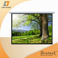 "1:1 Ratio 334"" Large Fibreglass Matte White Deluxe Electric Projection Screen"