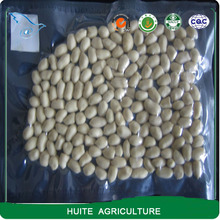 New Crop Long Shape Food Grade Raw Blanched Groundnut Kernel