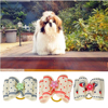 Dog Hair Bows Mixed Colors Doubleloop Flower Topknot Rubber Band Pet Gift