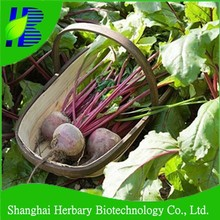 Beetroot seeds with tolerance to barren soil
