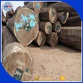 Sales Africa Excellent quality Teak wood