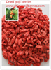 2016 crop convertional goji berries and certified organic goji berries producer