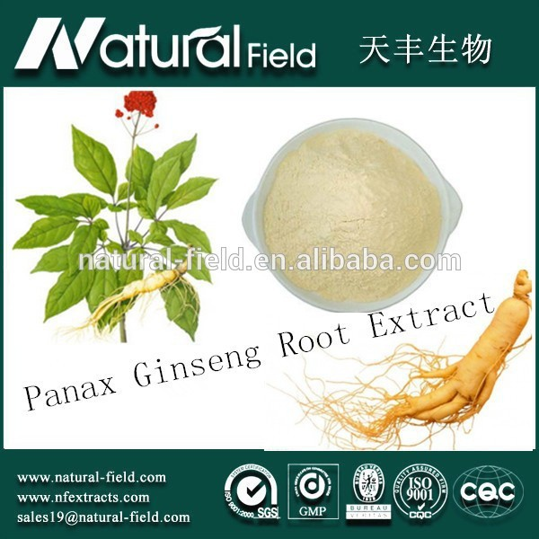 With 12 years experience Bulking price ginseng p.e.