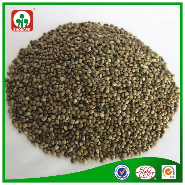 Wholesale Factory Price Reliable Quality Hemp Seed for sale