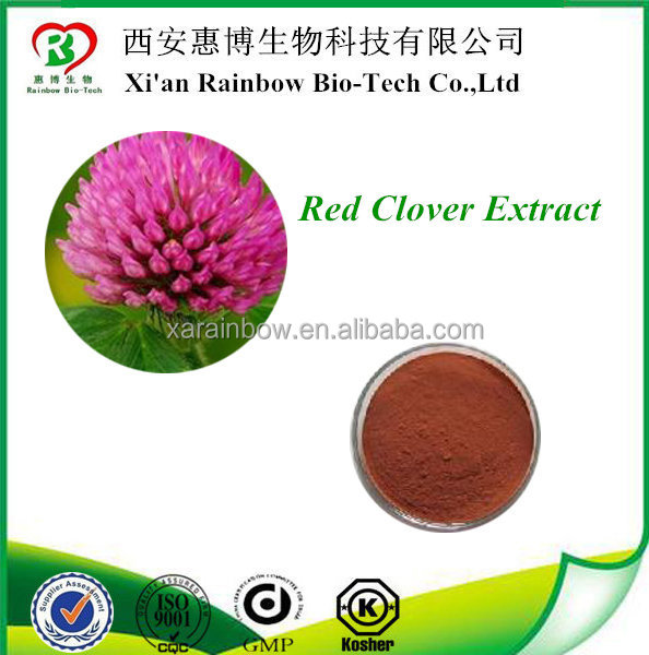 Pure Natural Red Clover Powder,Red Clover Powder Extract,Red Clover P.E.