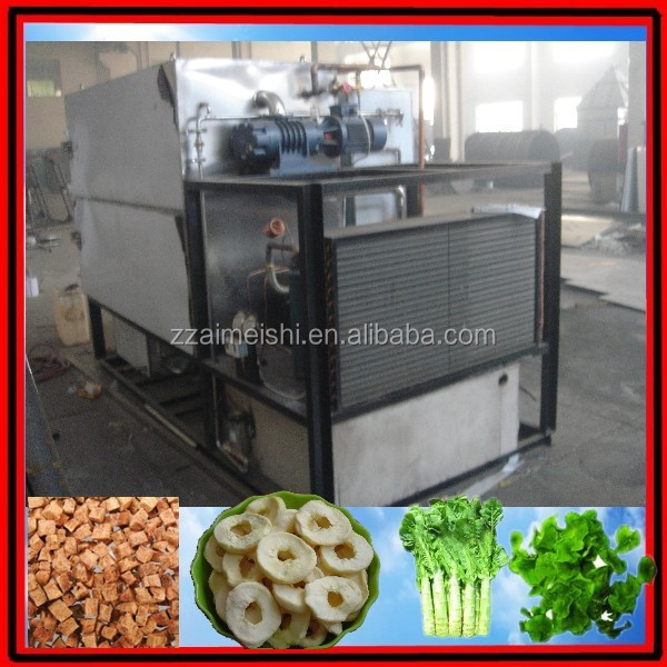 China factory supplying vacuum food dryer machine/dried fruit freeze drying equipment/0086-13838347135