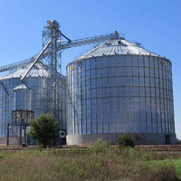 1000ton Galvanized Steel Wheat Storage Silos for Sale
