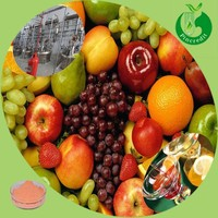 Freeze dried fruit juice powder cranberry extract