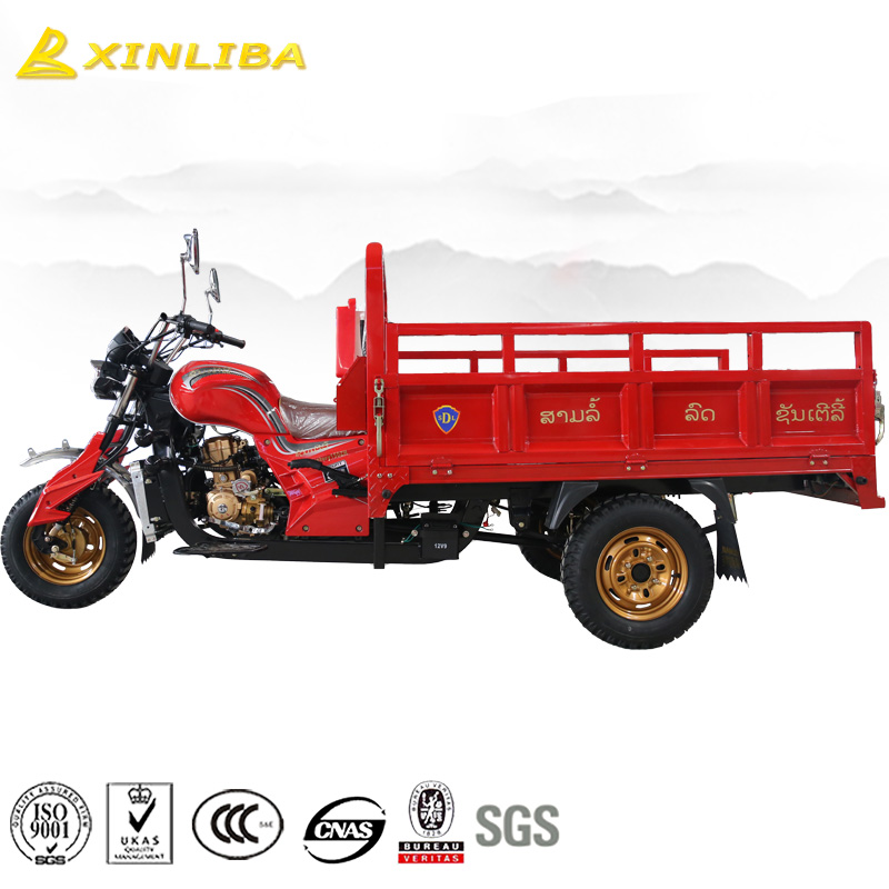 top quality cheap 175cc three wheel cargo motorcycle