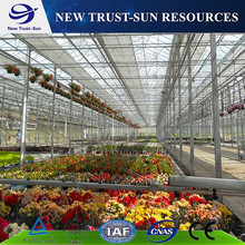 Cheap multi-span PC sheet/board greenhouse for vegetable/flower plant