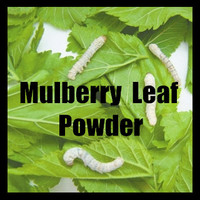 Mulberry Leaf Powder Folium Mori, Ramulus Mori Powder