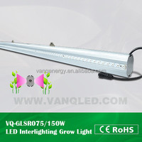 Tomato growing plant led light,75w waterproof led light grow for plant 1.5M