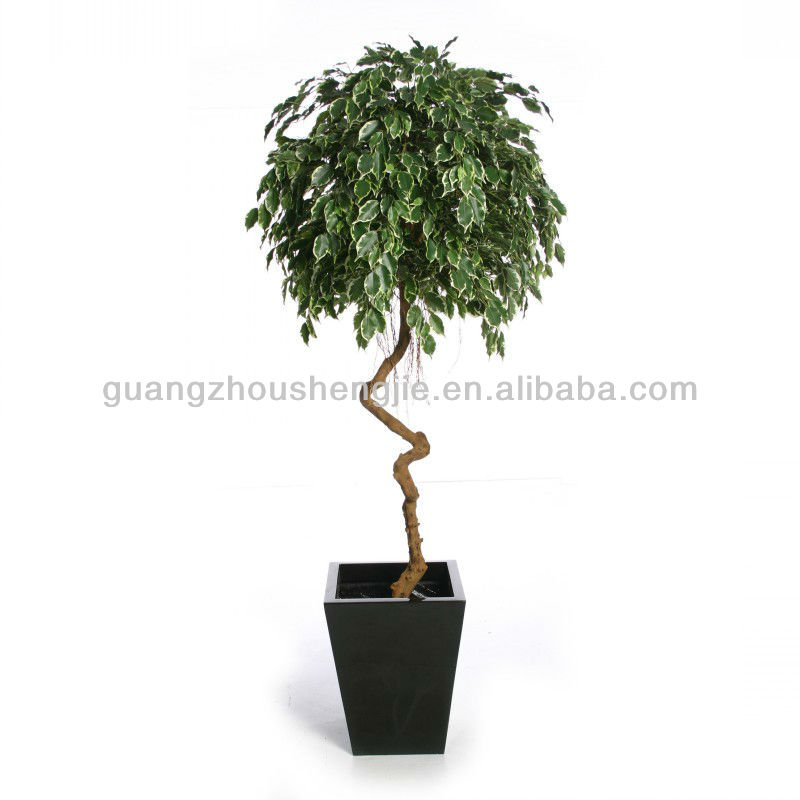 Twisted Stem Artificial Ficus Tree