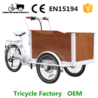 cargo trike tricycle for adults with motor