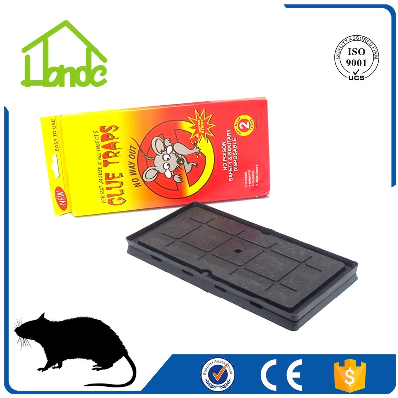 Heavy Duty Plastic Tray Rat Glue Trap HD034110