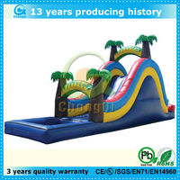 top popular inflatable slide 2013,2013 inflatable water slides