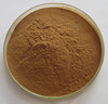 Top Quality 100% Natural Organic Black Cohosh Extract Powder