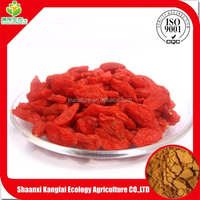 ISO Certificated Chinese Wolfberry Fruit/Goji Berry Extract Powder with High Quality and Competitive Price