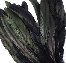 Home Decor rooster feather, black cock feather, dyed colourful feather wholesale