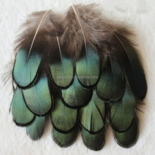 High Quality DIY Natural Chicken Feather Decoration For Sale