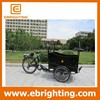 Plastic pedicabs electric assist for elderly