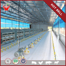 cage system automatic poultry house quail feeding equipments poultry pan feeding systems