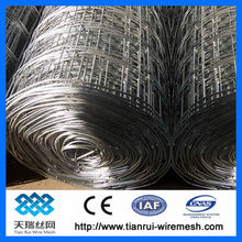 Electro/hot dipped galvanized welded wire mesh (Hot sell)