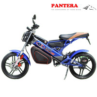 PT-E001 2014 High Quality New Model Popular Folding EEC Electric Motorcycles Made In China