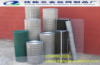 Green PVC coated holland wire mesh euro fence