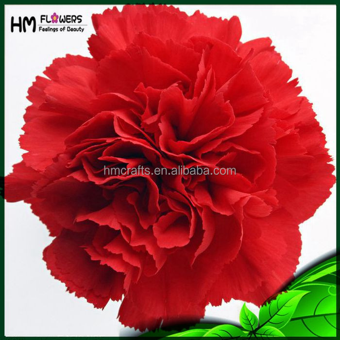 Factory Direct Artificial Flowers Artificial Carnation