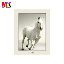 Strong 5D Effect Large Lenticular Picture of horse