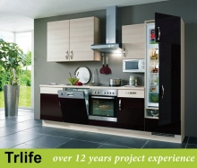 Trlife latest designs lacquer movable kitchen cabinet /outdoor kitchen with ware and tool