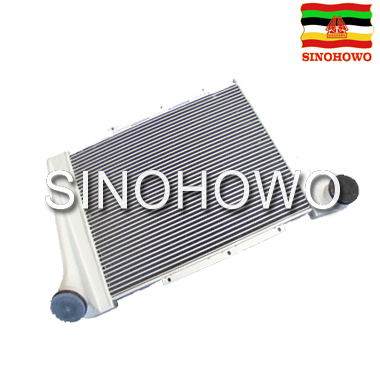 High endurance wholesale customized Auto Parts Inter Cooler 199112530269