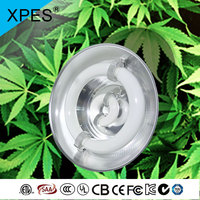 XPES induction lamp type item decorative plant indoor grow lights