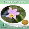 Hot selling Corosolic Acid 18% 98% from Lagerstroemia speciosa Extract, Banaba Extract