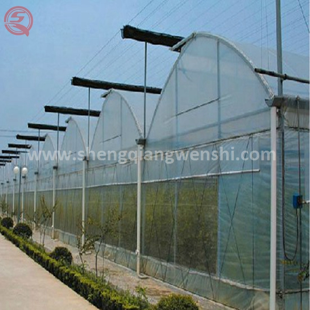 Modern design vegetable plastic film low cost greenhouse for sale