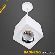 Hot Sale Adjustable 20W 30W 40W Surface Mounted LED COB foshan Indoor led down light With CE RoHS EMC SAA SASO Approved