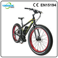 giant/ big power electric fat bike with EN15194