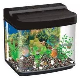 modern design resun curved small glass aquarium DM400
