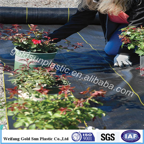 Agricultural garden ground cover fabric weed control / barrier mat / plastic pp anti weed mat