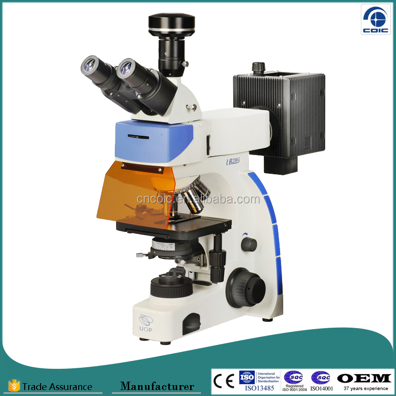 Chongqing Microscope Manufacturer Supply High Quality Medical Fluoresence Microscope
