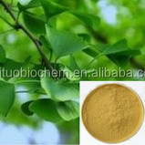 Ginkgo Biloba Leaf Extract/CP2015/GMP Factory