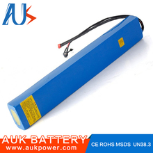 Competitive Price electric battery 20a 48v electric scooter battery
