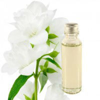 Jasmine Oil 100% Pure with Reasonable Price & Best Grade