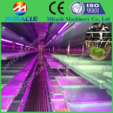 Miracle 40' shipping container type Hydroponics alfalfa fodder system for cow fresh feed with walk in passage