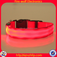 Akita Purple Led Pet Collar For Dogs Supplier Pet Accessory Purple Led Pet Collar For Dogs