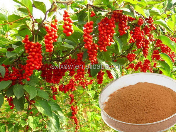100% organic fruit the new arrival pure schisandra chinensis extract