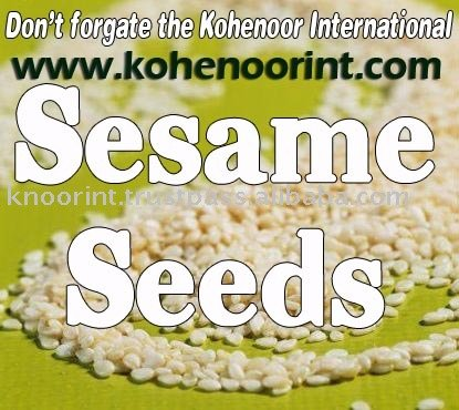 SESAME SEEDS Exporter KOHINOOR INTERNATIONAL