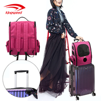 Premium Airline Approved Lightweight FabricPortable Foldable Expandable Dog Pet Travel Carrier Bag