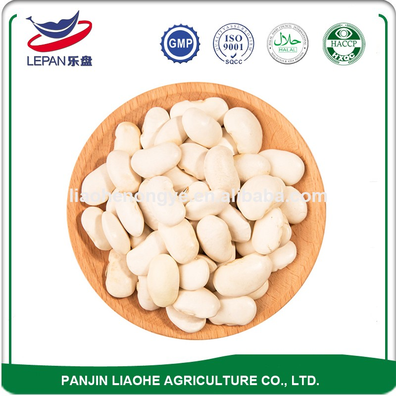 Premium Quality Long Shape Small Round White Kidney Beans